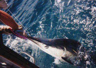 Becki-Marlin-at-boat